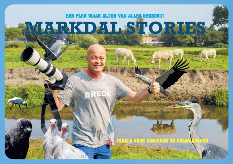 Cover Markdal Stories